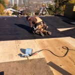 Flat roofing in Gatineau, Chelsea and Wakefield.